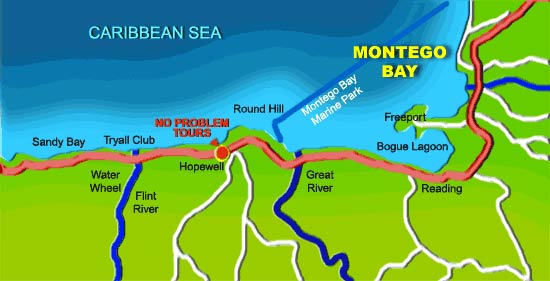 No Problem Tours Located near to Montego Bay Jamaica